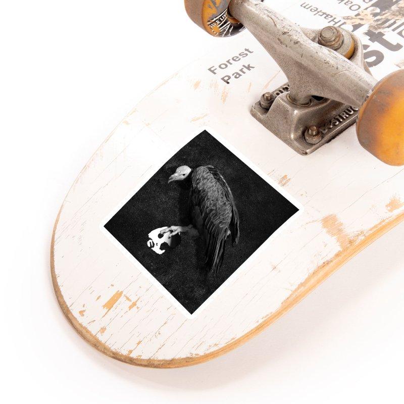 CasaNorte - Vulture Accessories Sticker by Casa Norte's Artist Shop