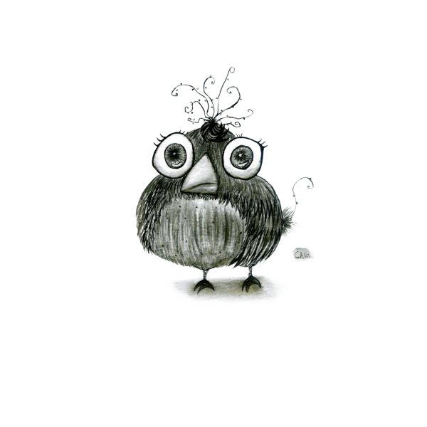 image for Big Eyes Bird