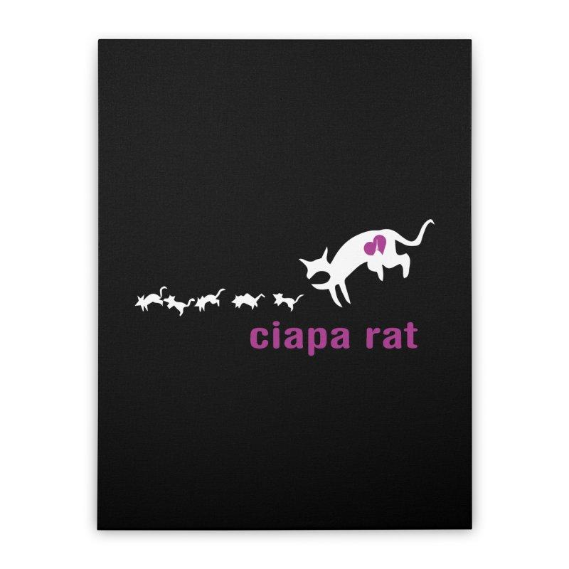 ciapa rat Home Stretched Canvas by Lospaccio Conamole