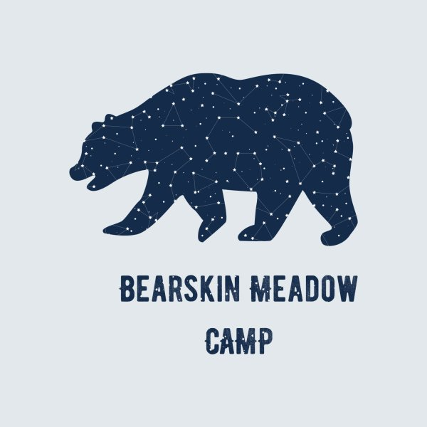 image for Constellation Bear