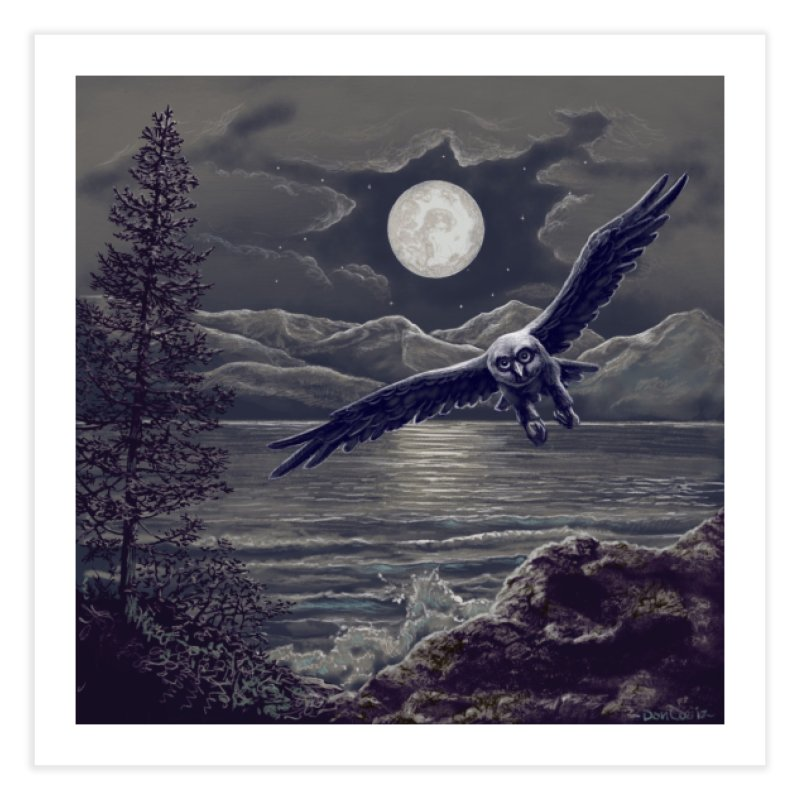 Owl over Kachemak Bay Home Fine Art Print by Dan Coe Art