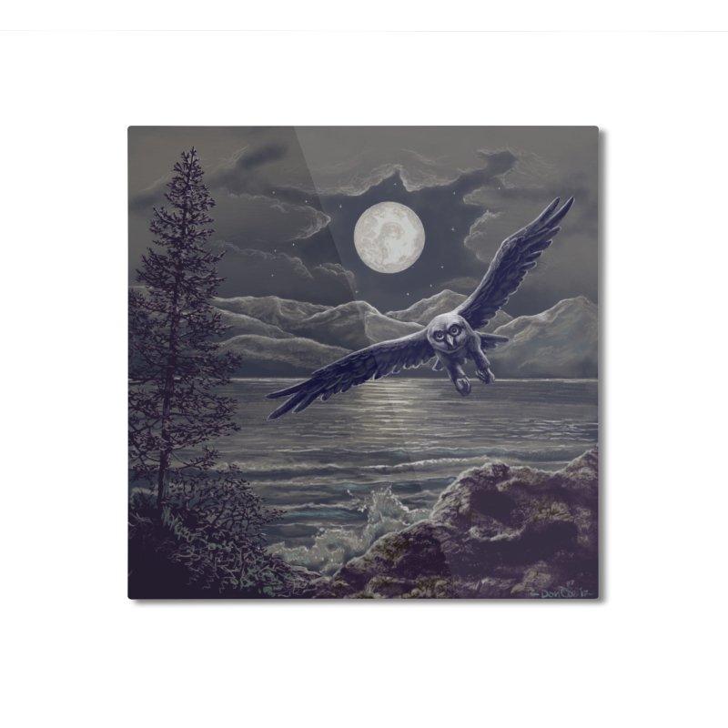 Owl over Kachemak Bay Home Mounted Aluminum Print by Dan Coe Art