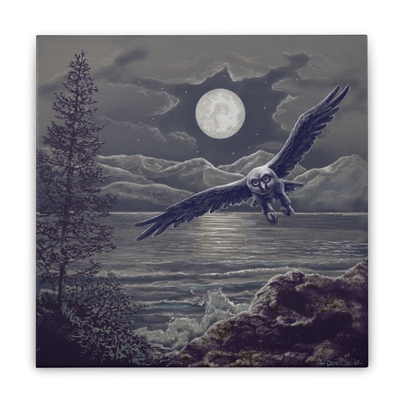 Owl over Kachemak Bay Home Stretched Canvas by Dan Coe Art