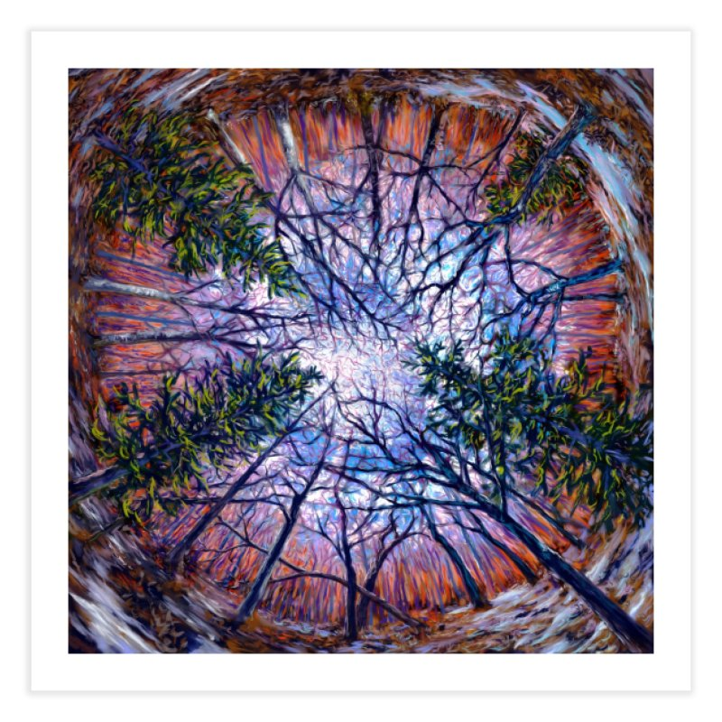 Forest eye  Home Fine Art Print by Dan Coe Art