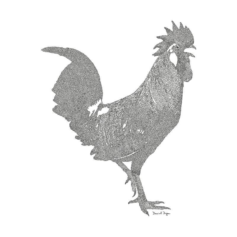 Cock - One Continuous Line Women's T-Shirt by Daniel Dugan's Artist Shop