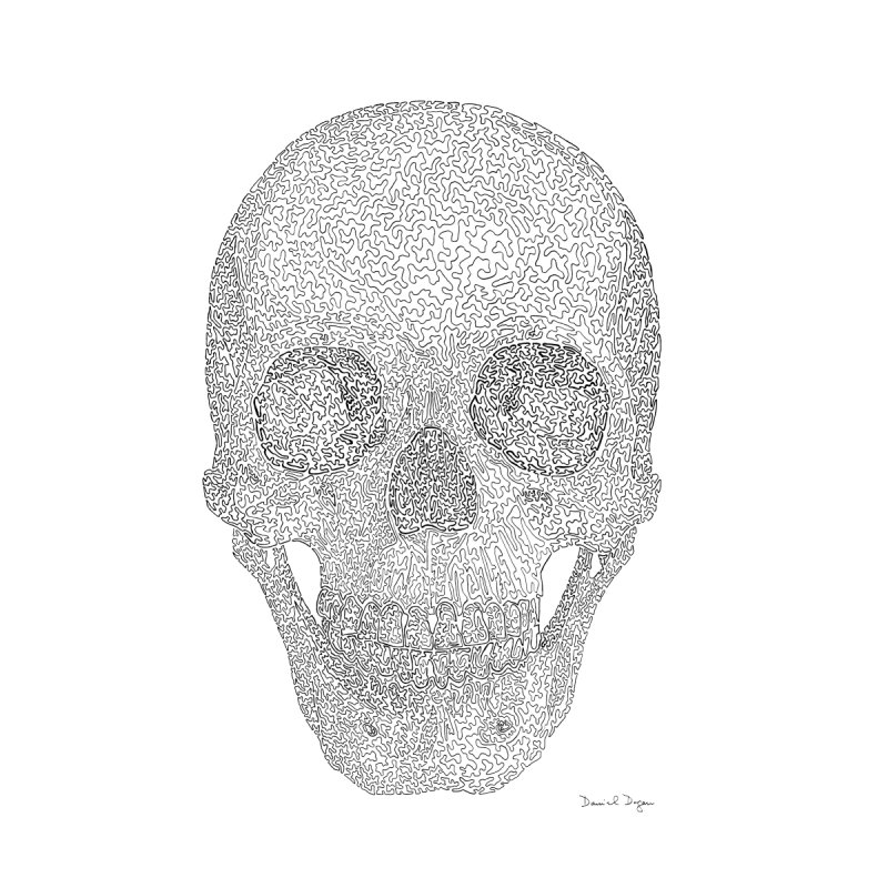 Skull (Black) - One Continuous Line None  by Daniel Dugan's Artist Shop