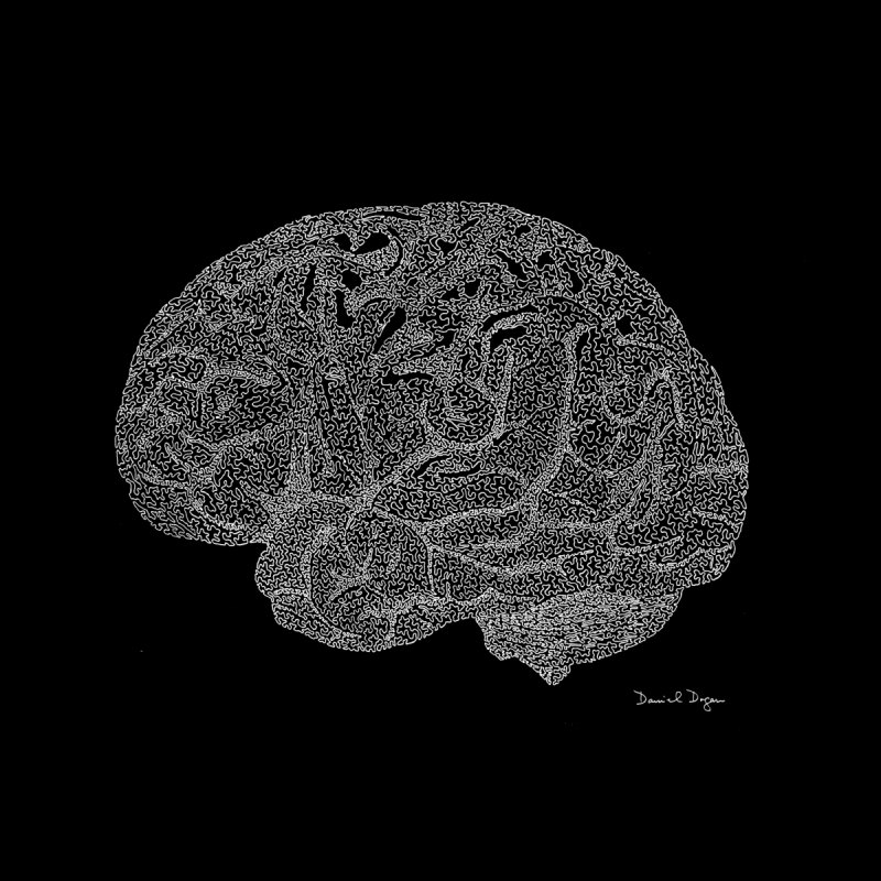 Brain (For Dark Backgrounds) Women's Longsleeve T-Shirt by Daniel Dugan's Artist Shop