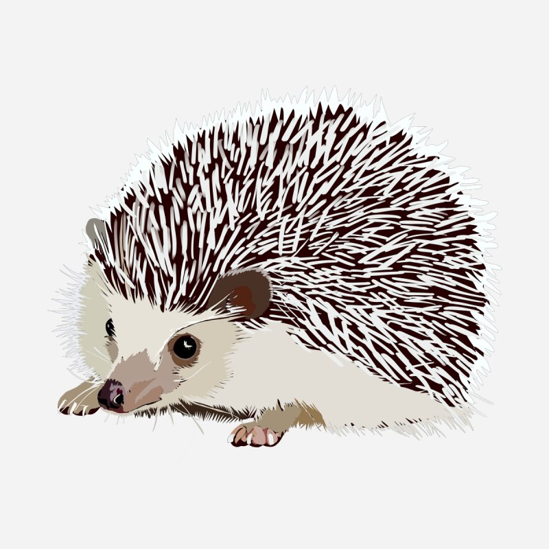 Happy Hedgehog by DevilishDetails's Artist Shop