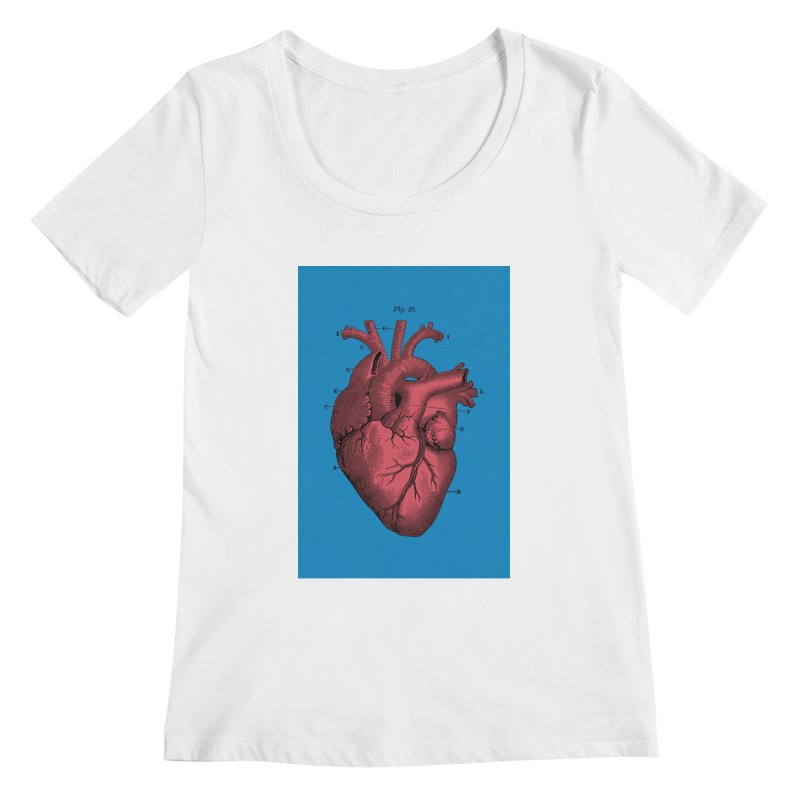 Vintage Anatomy Heart Women's Scoopneck by The Digital Crafts Shop