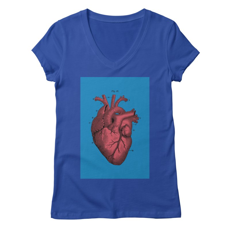Vintage Anatomy Heart Women's V-Neck by The Digital Crafts Shop