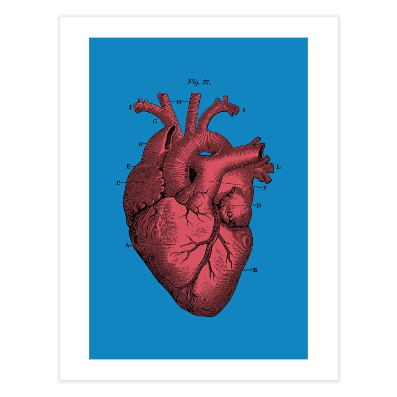 Vintage Anatomy Heart Home Fine Art Print by The Digital Crafts Shop