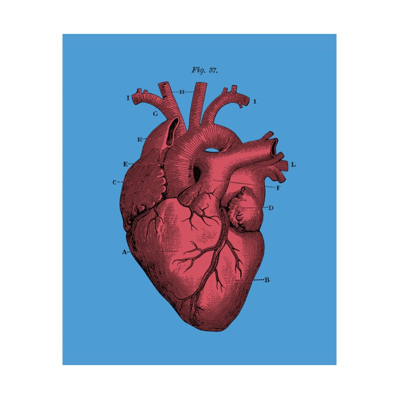 Vintage Anatomy Heart by The Digital Crafts Shop