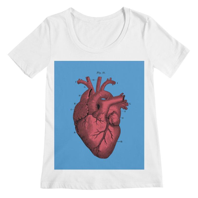Vintage Anatomy Heart Illustration Women's Regular Scoop Neck by The Digital Crafts Shop