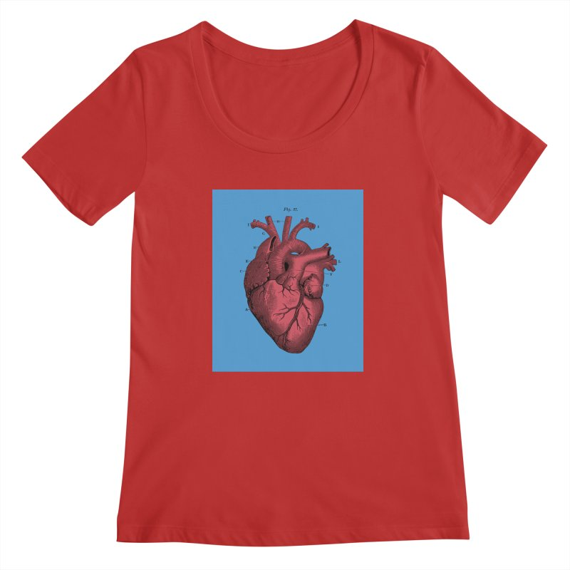 Vintage Anatomy Heart Illustration Women's Scoopneck by The Digital Crafts Shop