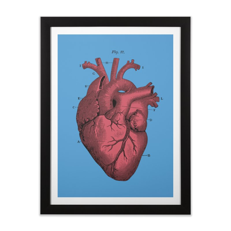 Vintage Anatomy Heart Illustration Home Framed Fine Art Print by The Digital Crafts Shop