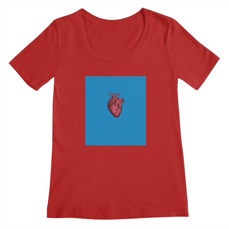 Vintage Anatomical Heart Women's Scoopneck by The Digital Crafts Shop