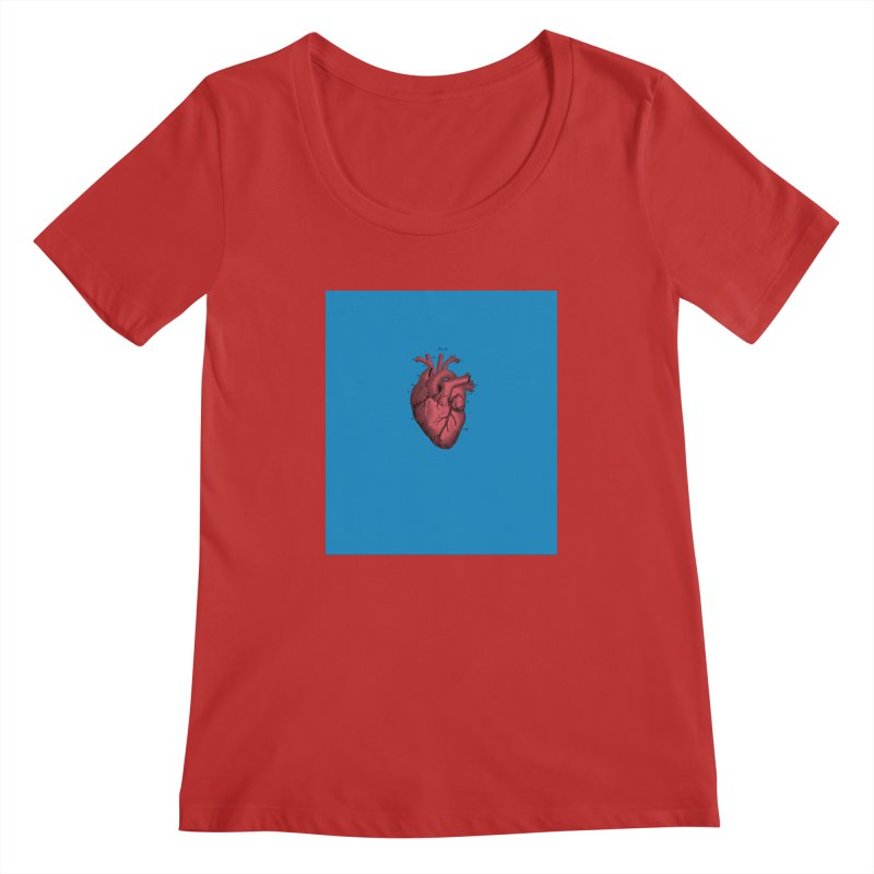 Vintage Anatomical Heart Women's Scoopneck by The Digital Crafts Shop