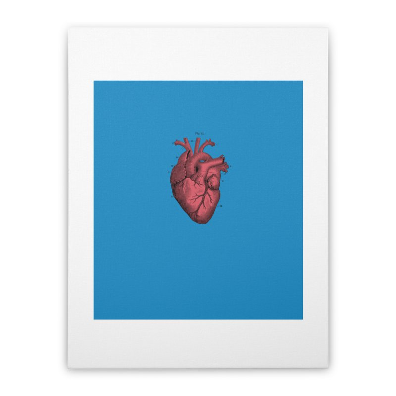 Vintage Anatomical Heart Home Stretched Canvas by The Digital Crafts Shop