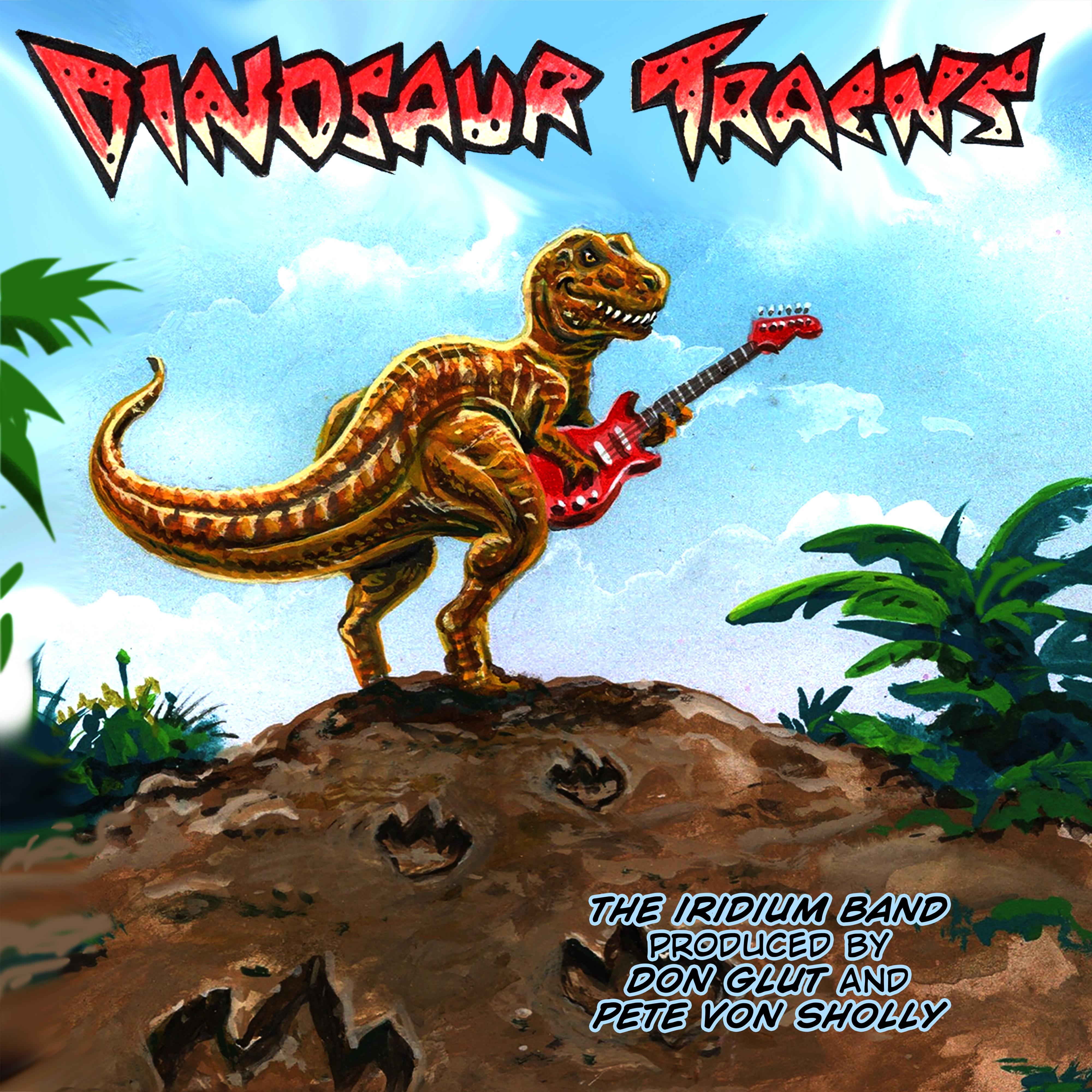 Diinotracks Cover