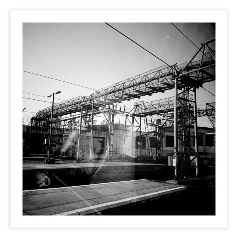View from the train 6 BW Home Fine Art Print by Dogfish's Merch