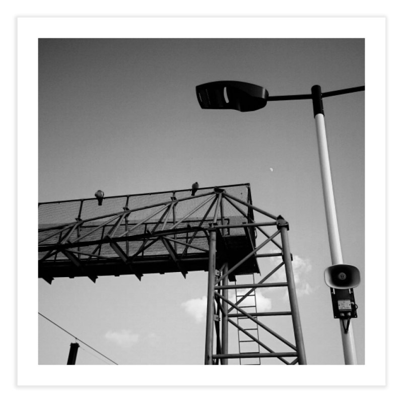 View from the train 7 BW Home Fine Art Print by Dogfish's Merch