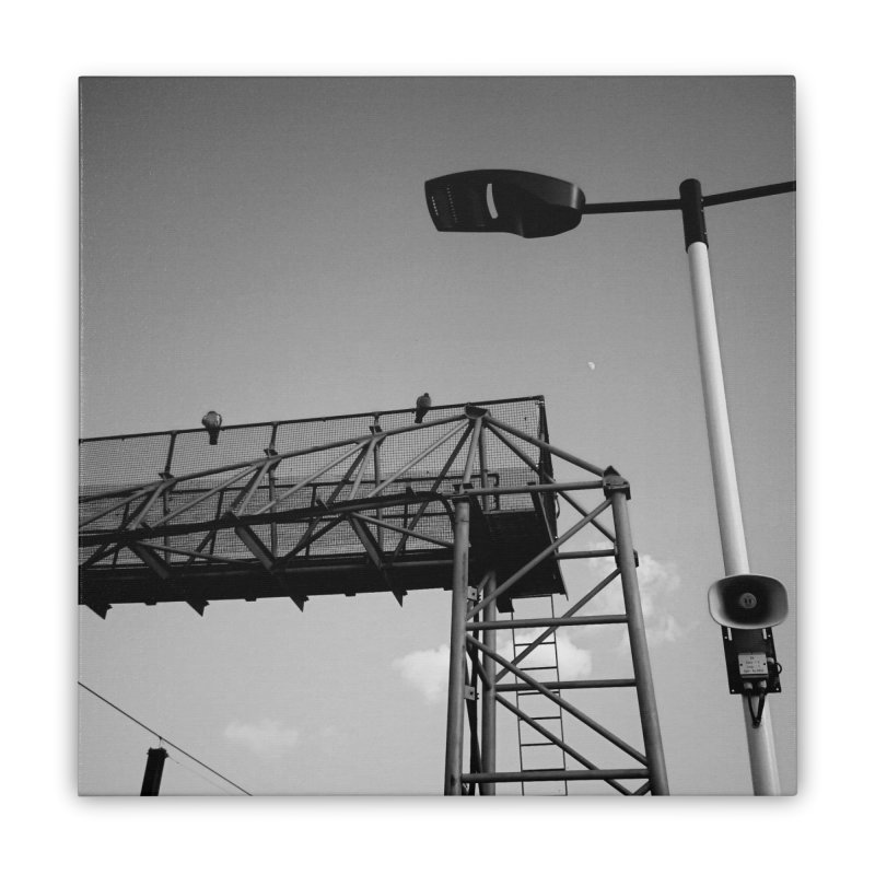 View from the train 7 BW Home Stretched Canvas by Dogfish's Merch