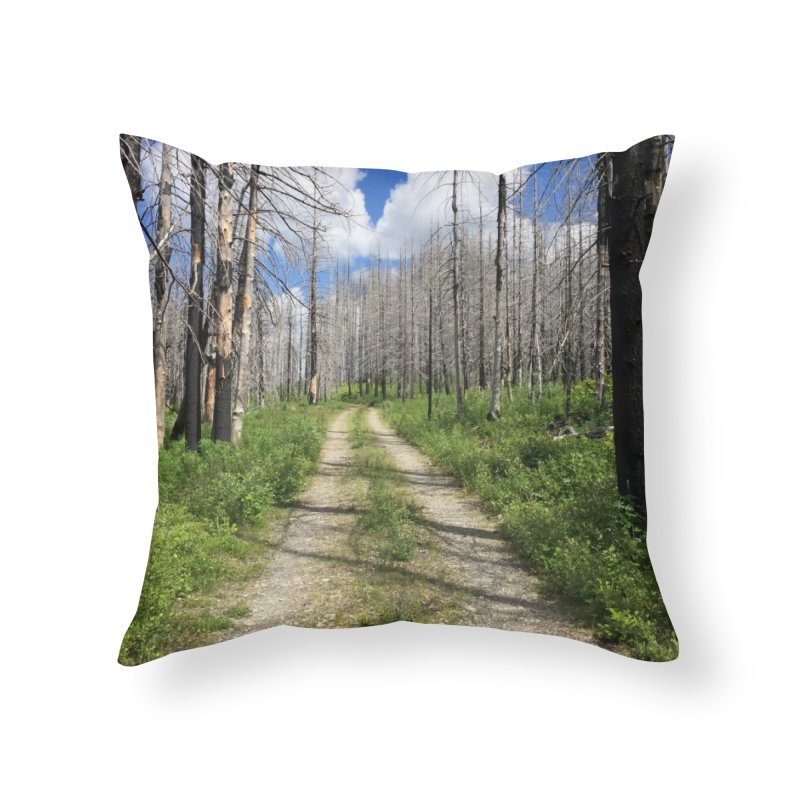 Journey is the Destination Home Throw Pillow by Dustin Klein's Artist Shop