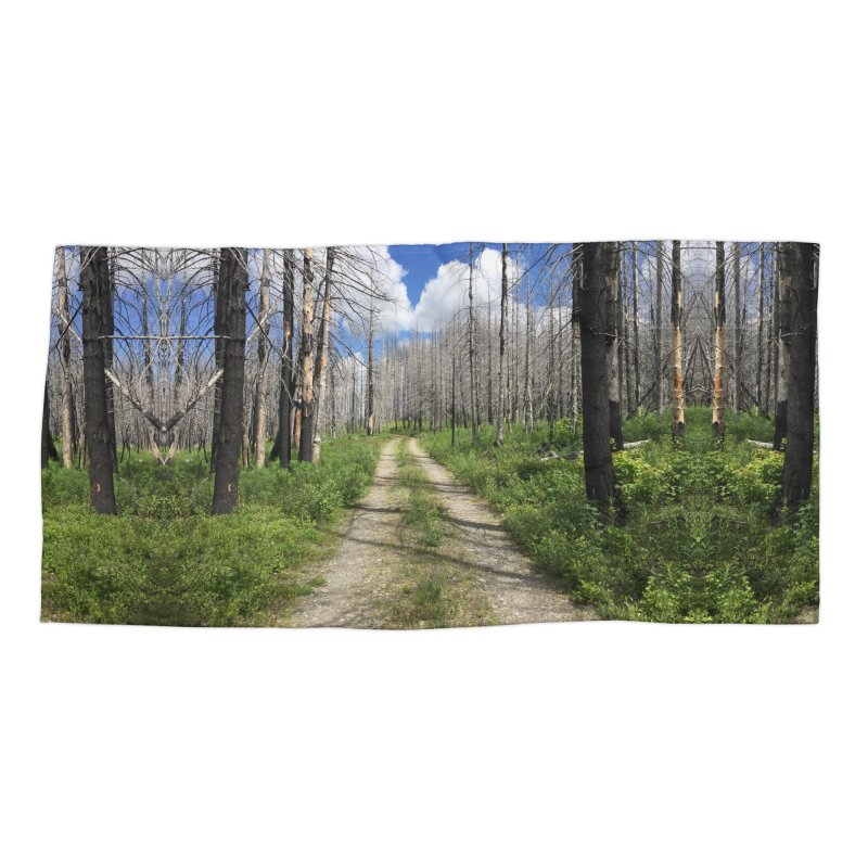 Journey is the Destination Accessories Beach Towel by DustinKlein's Artist Shop