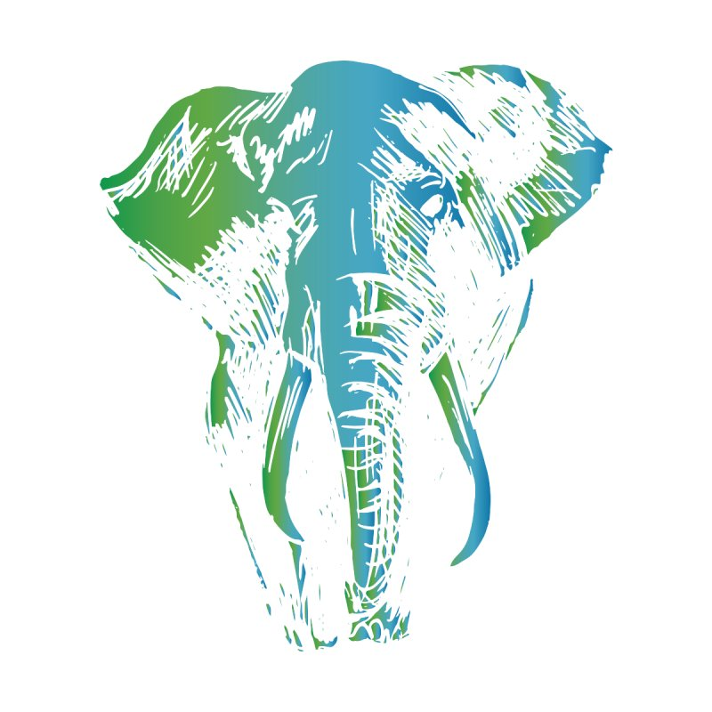 World Elephant Day 2020 Women's T-Shirt by Earthwatch
