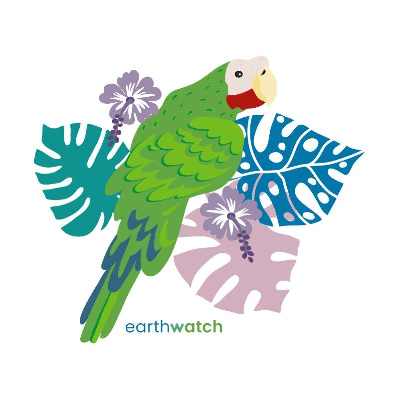 Cuban Amazon Parrot Women's V-Neck by Earthwatch