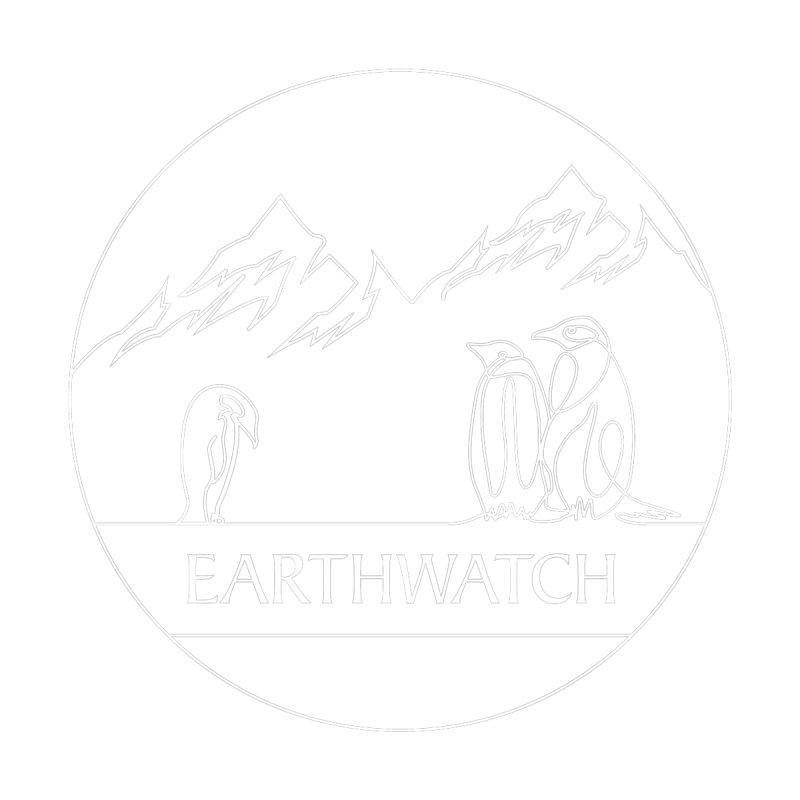 Penguin | Earthwatch Kids Baby T-Shirt by Earthwatch