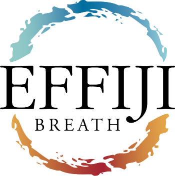 Effiji's Artist Shop Logo