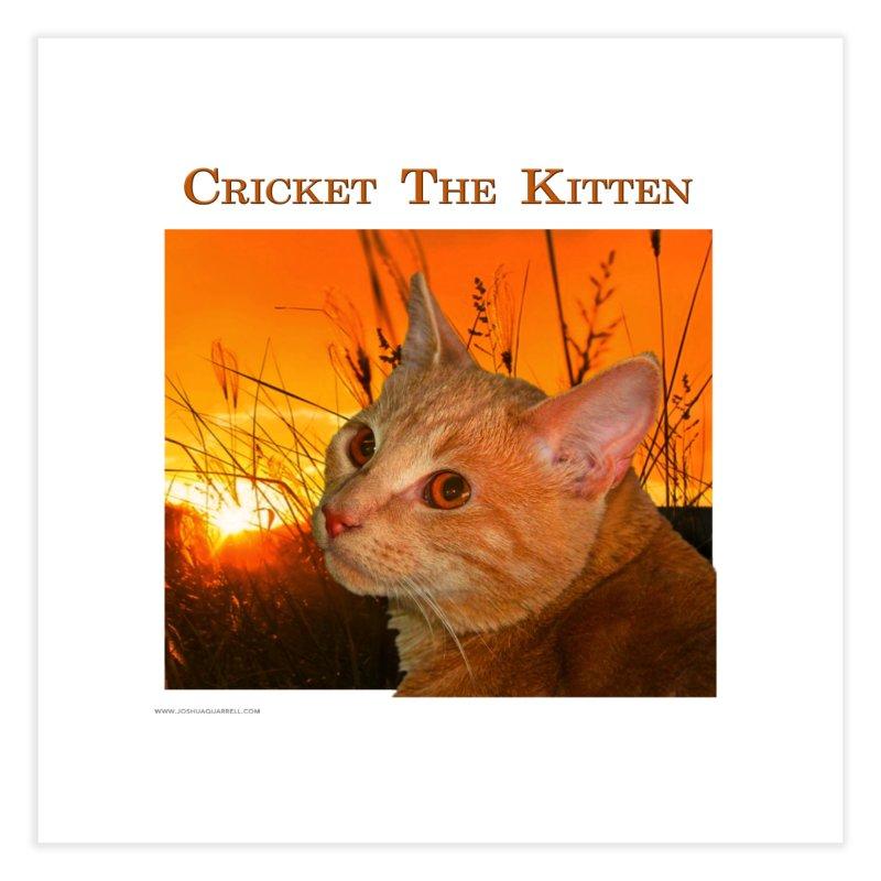 Cricket The Kitten Home Fine Art Print by Every Drop's An Idea's Artist Shop