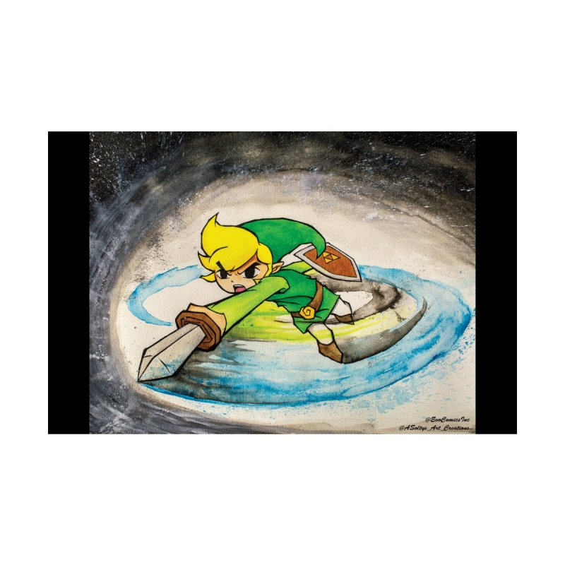 Legend Of Zelda - Link by Evolution Comics INC