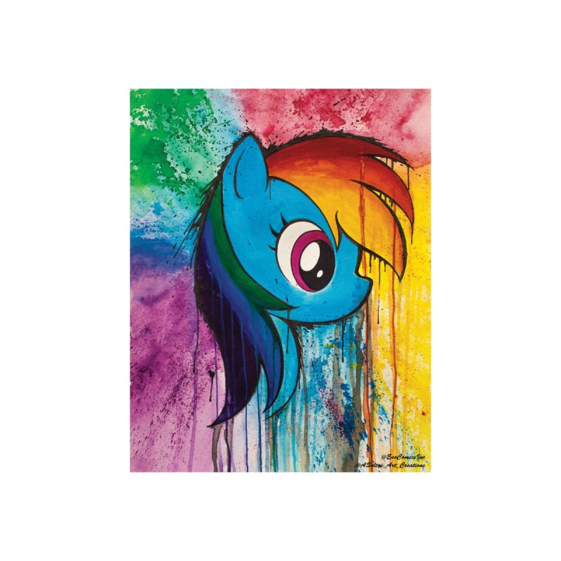 My Little Pony - Dash by Evolution Comics INC