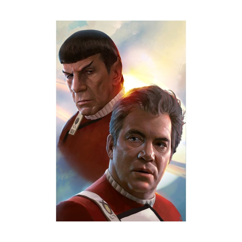 Star Trek - Kirk and Spock by Evolution Comics INC