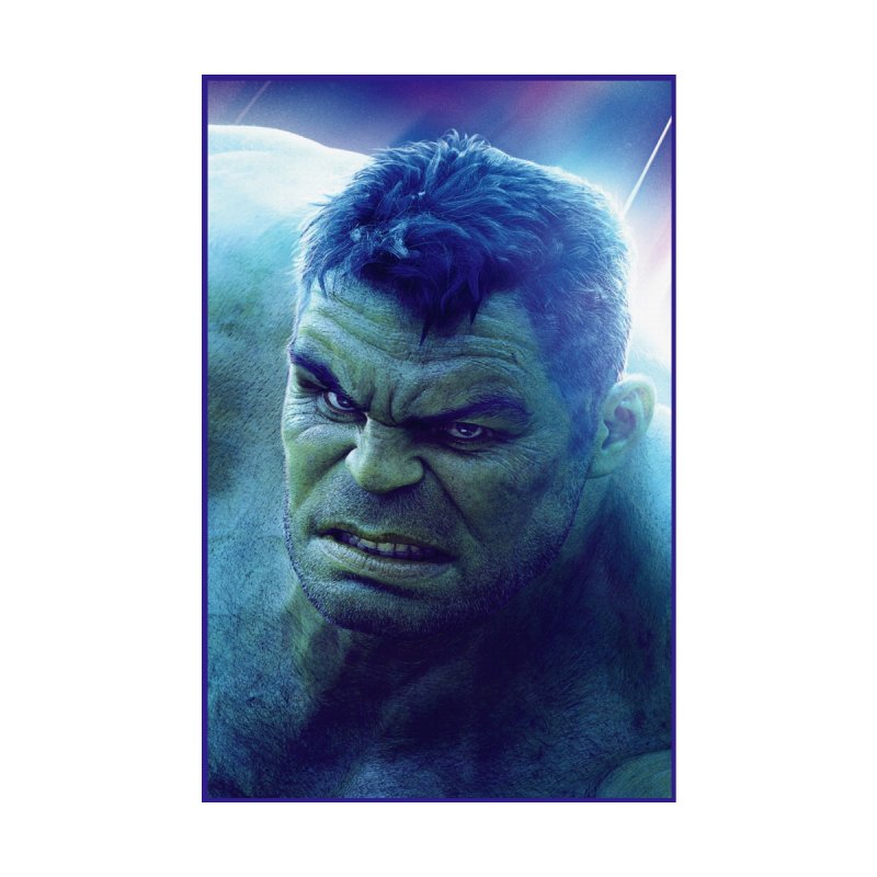 Hulk by Evolution Comics INC