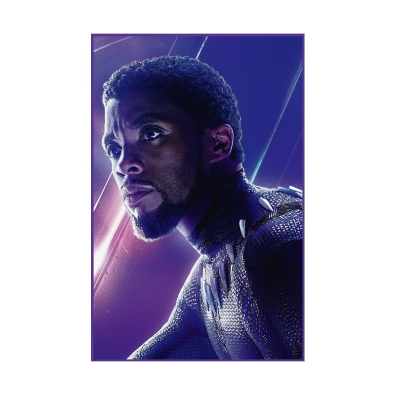 Black Panther - Infinity Endgame by Evolution Comics INC