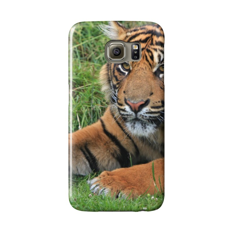 buy popular cd503 3f4ec Tiger laying on grass | franceslewis's Shop