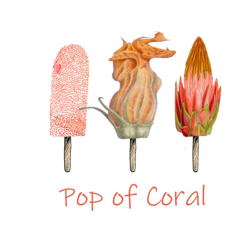 Pop of Coral Kids Pullover Hoody by All Fashioned by Nature Artist Shop