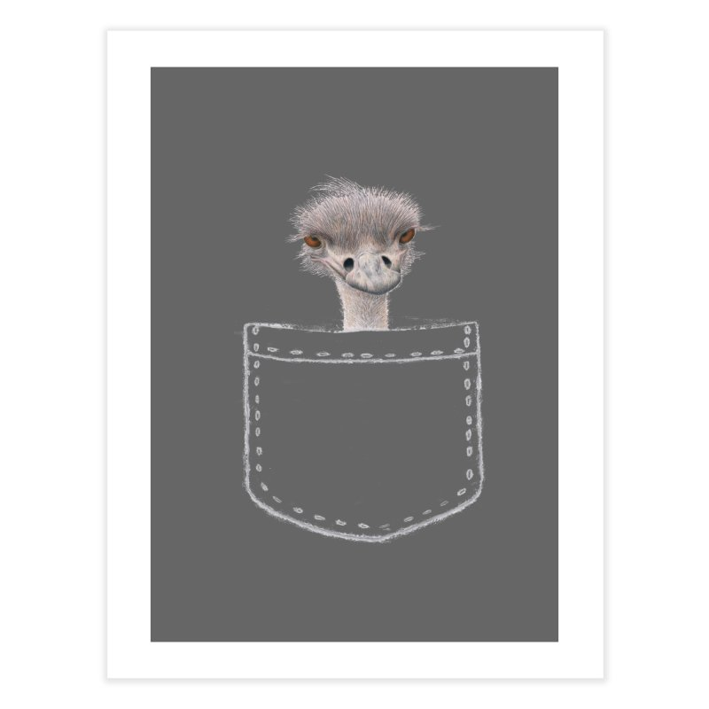 Ostrich in my Pocket Home Fine Art Print by All Fashioned by Nature Artist Shop