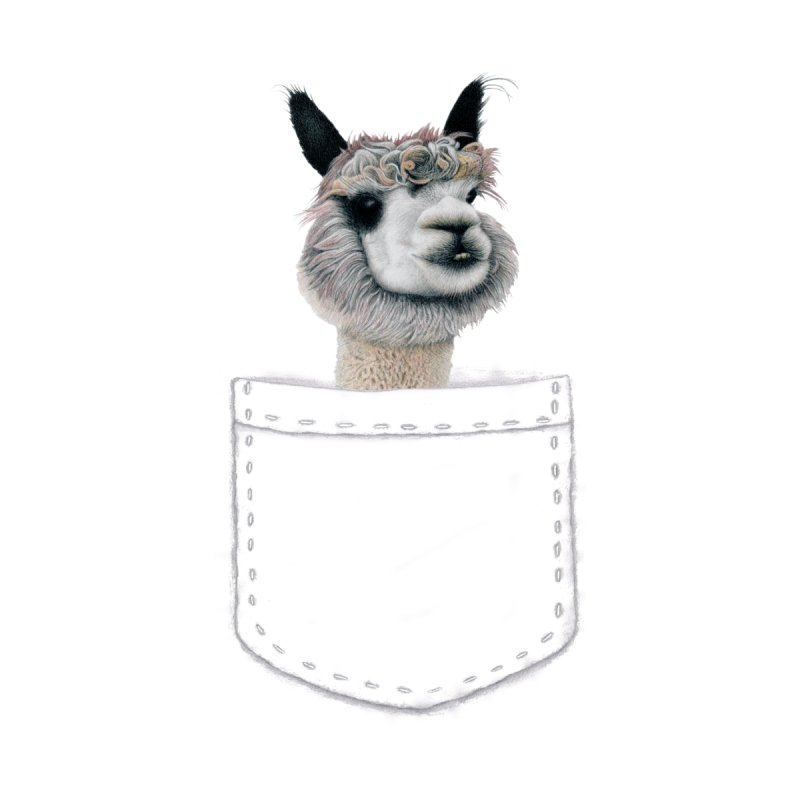 Alpaca In My Pocket Home Throw Pillow by All Fashioned by Nature Artist Shop