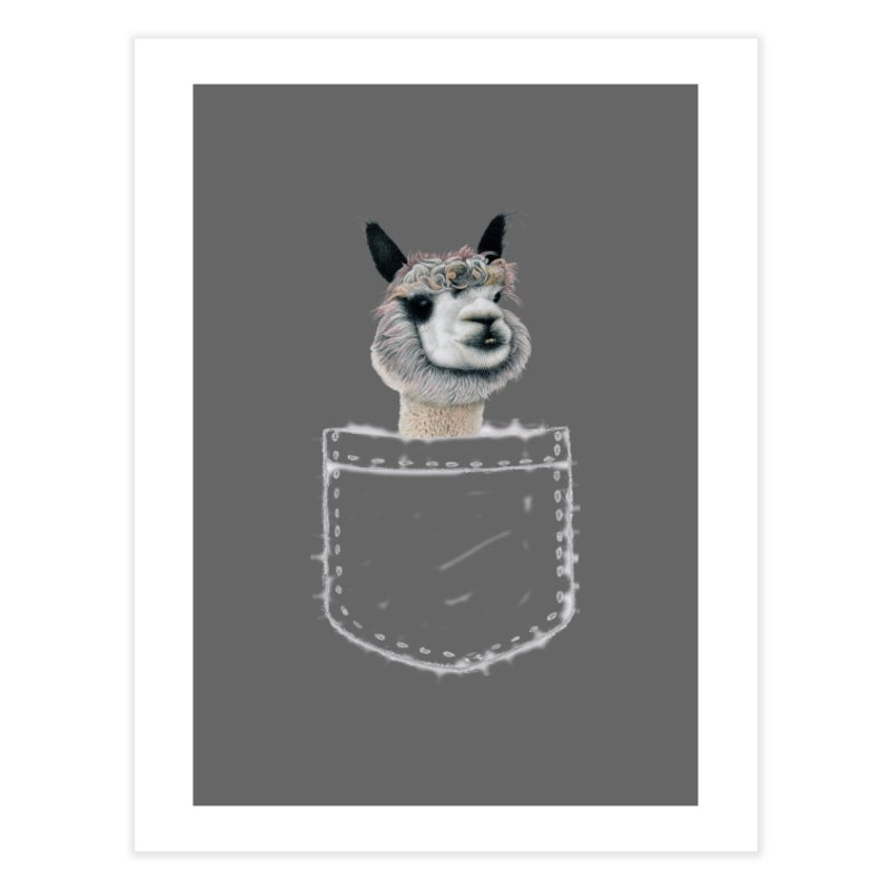 Alpaca In My Pocket Home Fine Art Print by All Fashioned by Nature Artist Shop