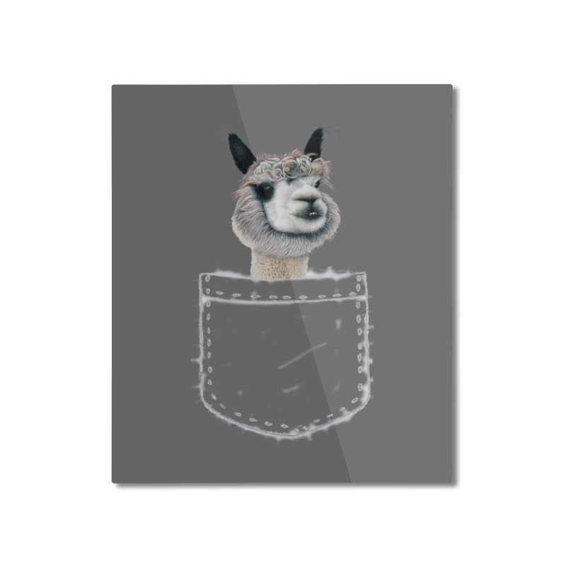 Alpaca In My Pocket Home Mounted Aluminum Print by All Fashioned by Nature Artist Shop