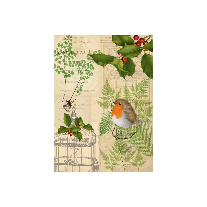 Robin and Holly Christmas Card Accessories Greeting Card by All Fashioned by Nature Artist Shop