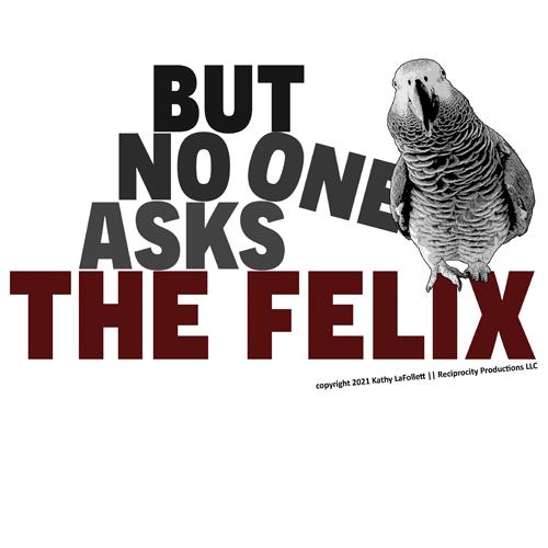 But-Nobody-Asks-The-Felix