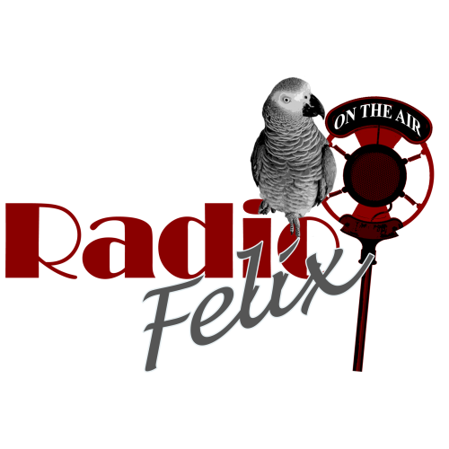 Radio-Felix-Is-On-The-Air