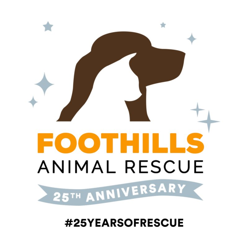 25th Anniversary Ribbon Women's Longsleeve T-Shirt by Foothills Animal Rescue Swag