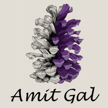 Amit's Artist Shop Logo