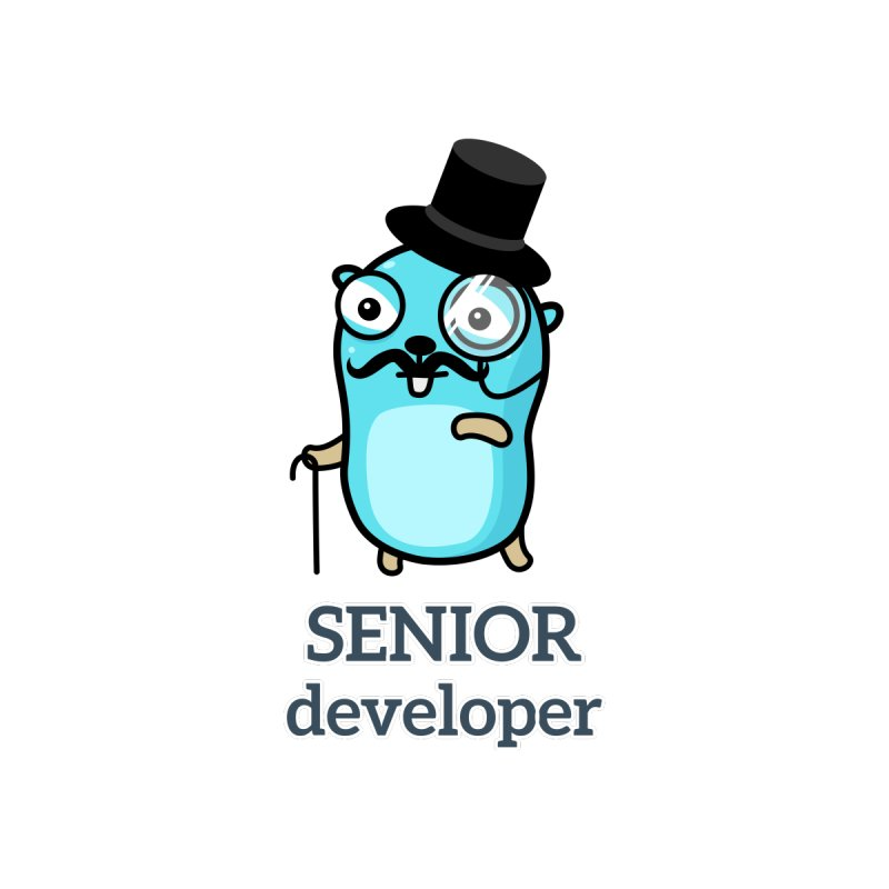 senior developer Kids Baby T-Shirt by Be like a Gopher